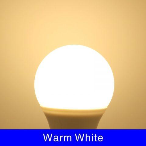 10pcs LED Bulb Lamps LED Light