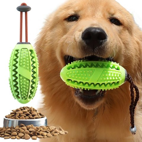 Dog Interactive Chew Toy